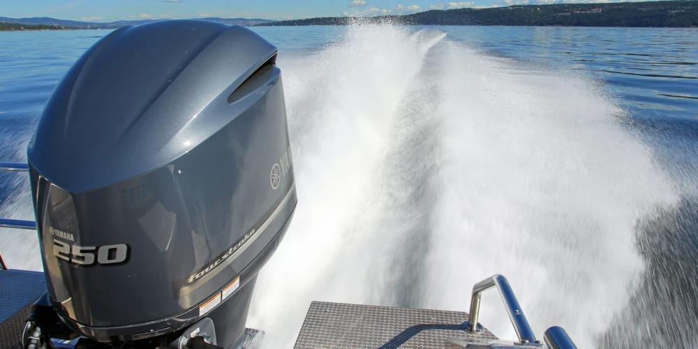 yamaha 250 мотор лодочный мотор